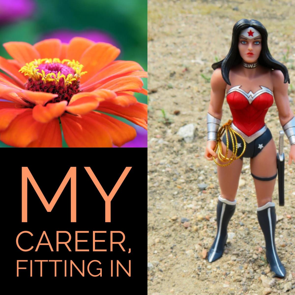 My Career & Fitting In