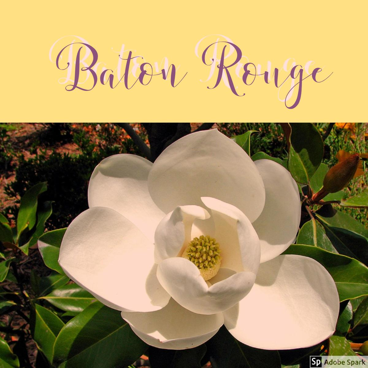 Callin' Baton Rouge- The Countless Reasons to Visit